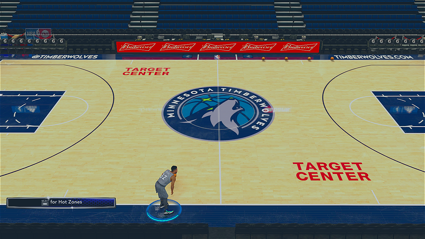 2017-2018 Minnesota Timberwolves Official Court