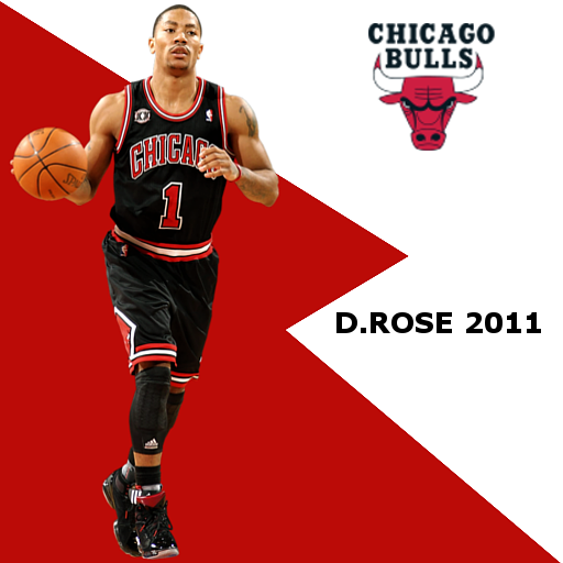 Derrick Rose 2011 Portrait