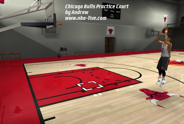 Chicago Bulls Practice Court Patch