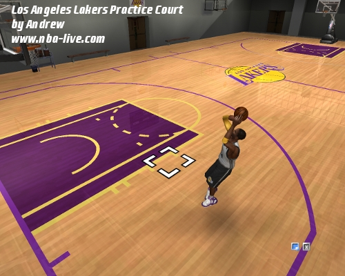 Los Angeles Lakers Practice Court Patch