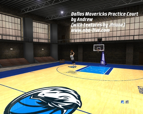 Dallas Mavericks Practice Court Patch