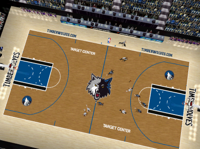 Minnesota Timberwolves Court Patch