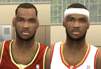 LeBron James Face Patch