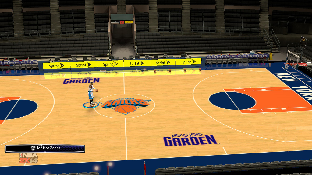 1996 New York Knicks Court